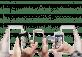 Signal presenta una nueva función para administradores de grupos